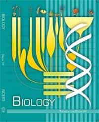 NCERT Biology Class XII